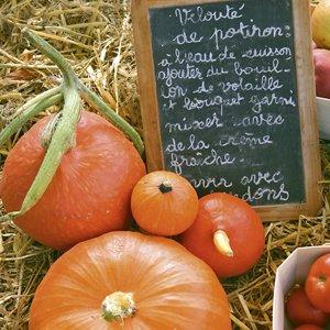 recette-de-la-soupe-de-potiron-edith-orleans